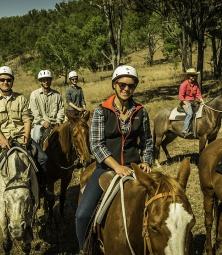 Werken met Paarden in Australie